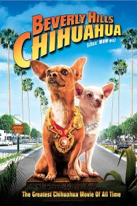 BEVERLY_HILLS_CHIHUAHUA-web